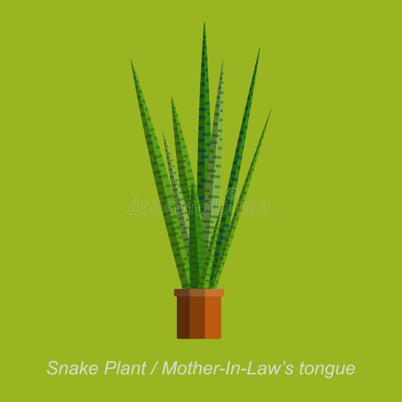导航室内homeplant蛇植物的平的例证罐的 向量例证