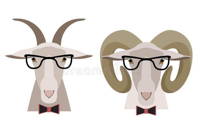 导航山羊、绵羊在玻璃和弓 动画片平的样式 库存例证