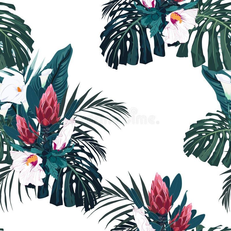 导航无缝的热带样式,生动的热带叶子,与棕榈monstera、香蕉叶子和木槿花 库存例证