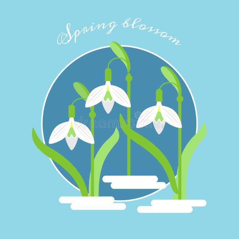 导航春天在一个蓝色圈子的花snowdrops的平的例证 免版税库存照片