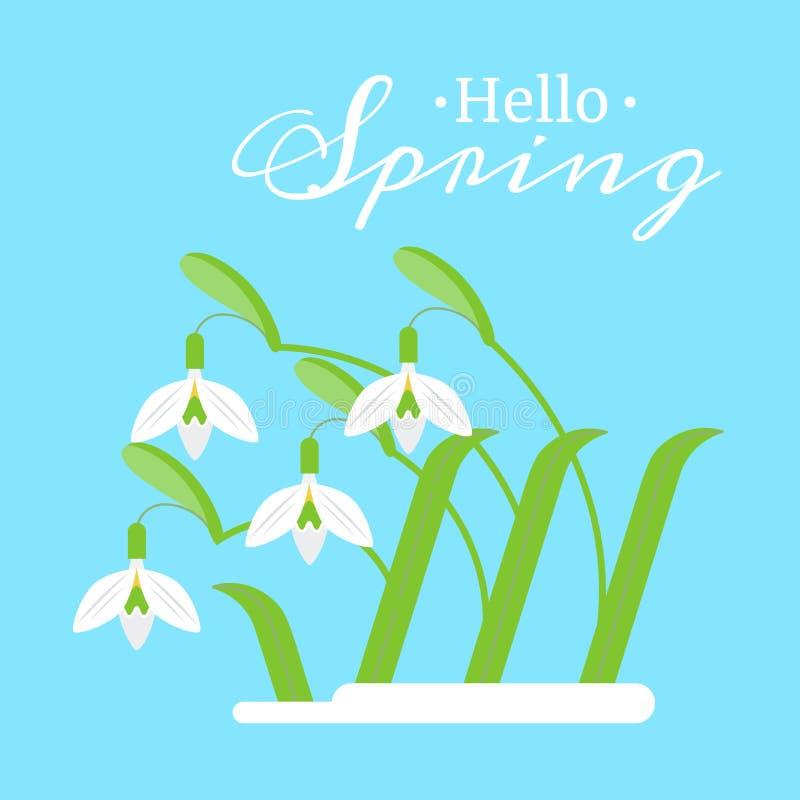 导航春天在蓝色背景的花snowdrops的平的例证 免版税库存照片