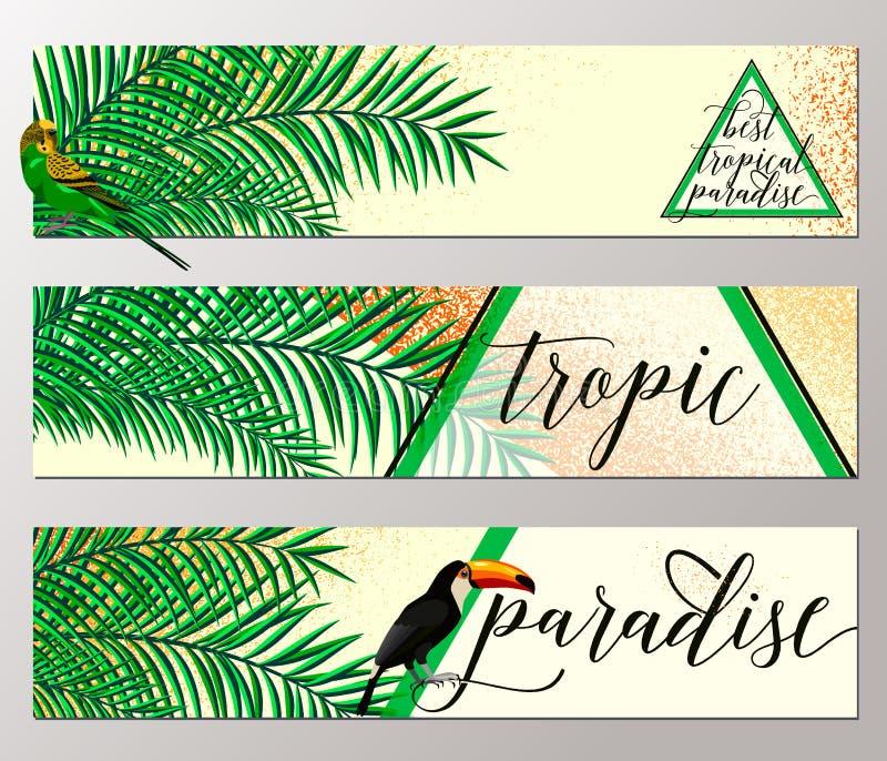 导航热带天堂横幅收藏, toucan,棕榈叶,难看的东西作用,夏天的例证与鹦鹉的 向量例证