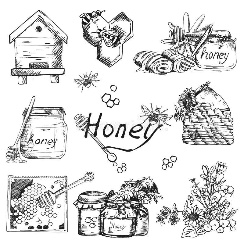 导航背景墙纸剪影样式蜂蜜,养蜂业 颜色手拉的集合 与蜂,蜂房,瓶子,桶的模板 库存例证