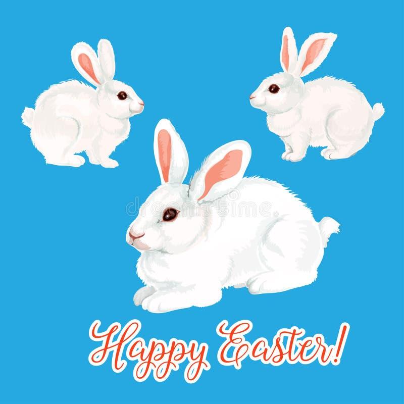 导航逾越节兔宝宝野兔或复活节兔子象  库存例证