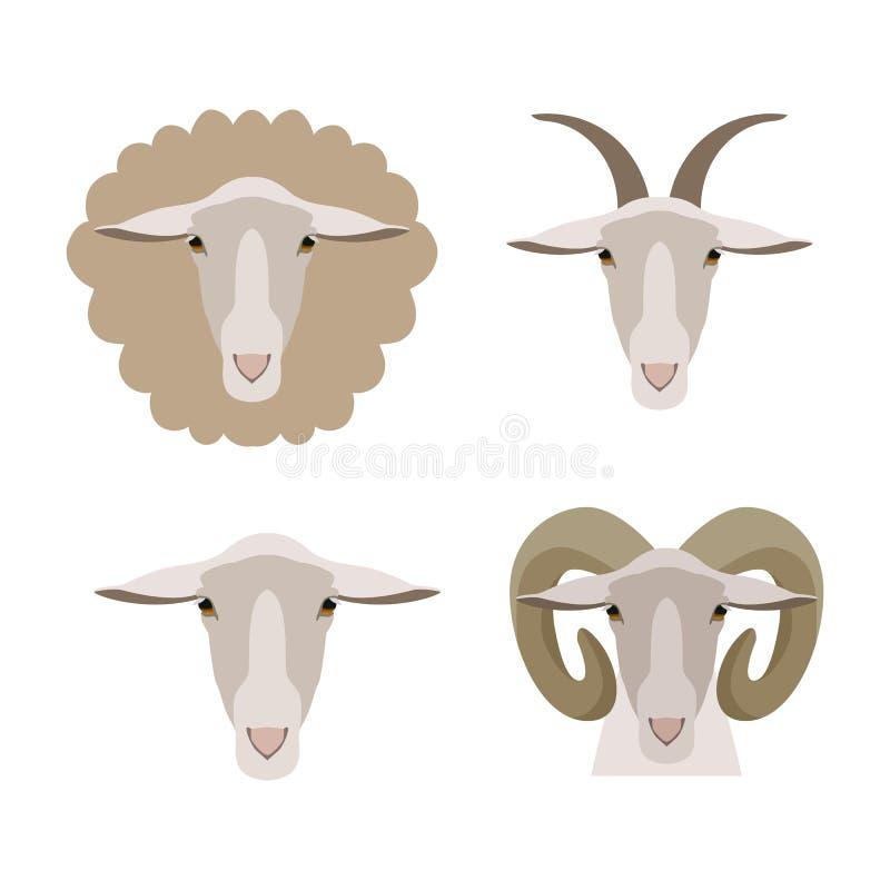 导航绵羊,山羊公羊被隔绝的羊羔头 平,动画片样式 库存照片