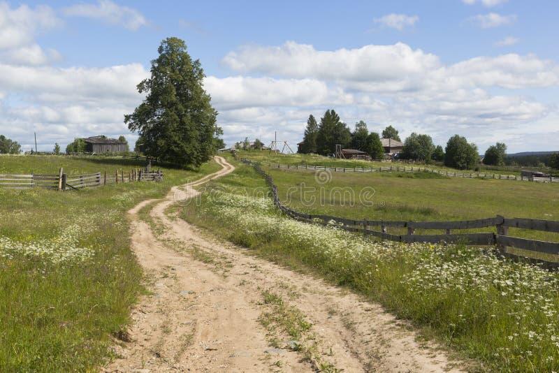 导致俄国北部的村庄的路 库存照片