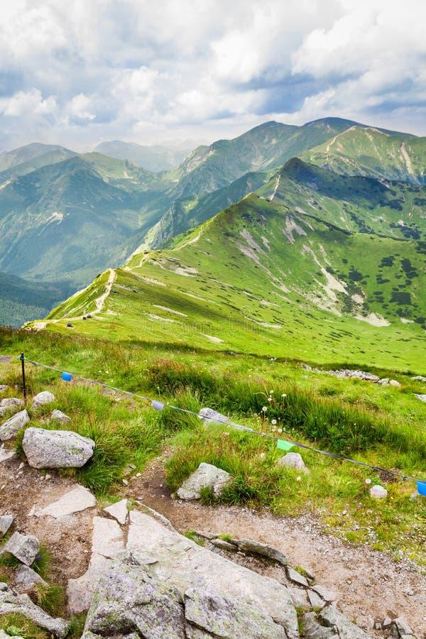 导致山峰的路 免版税库存图片