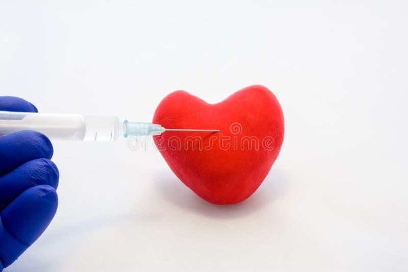 射入到心脏或心血管病治疗概念照片里 医生在他的手上举行,穿戴在手套,有m的注射器 图库摄影