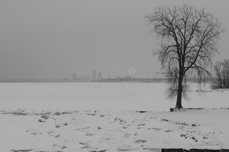 射击冻伊利湖和克利夫兰地平线 免版税库存照片
