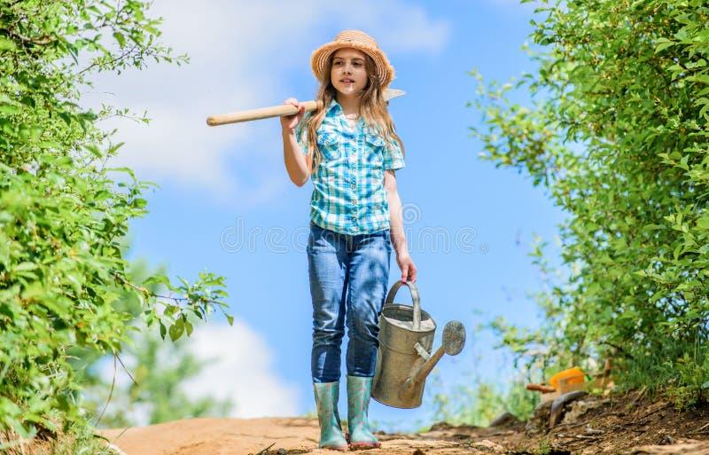 将解决干燥围场问题的浇灌的工具 可移动的玫瑰允许适度流程 从事园艺的技巧 r 库存照片