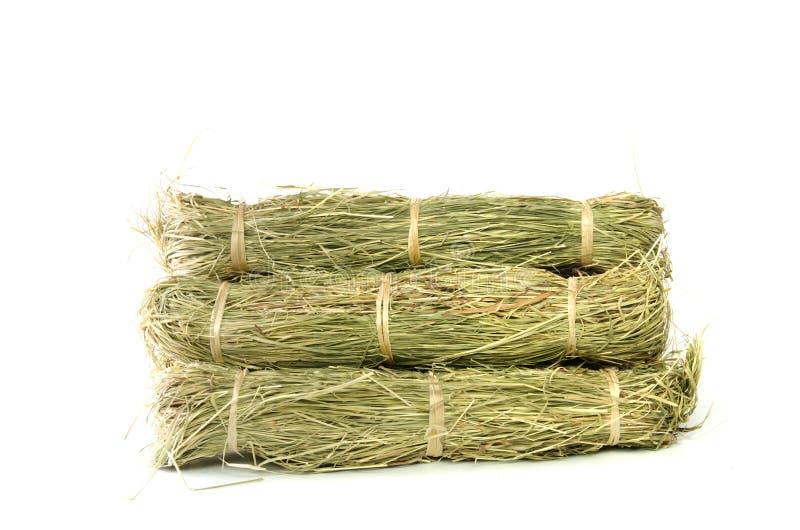 小一定的干草捆或干草堆 免版税库存照片