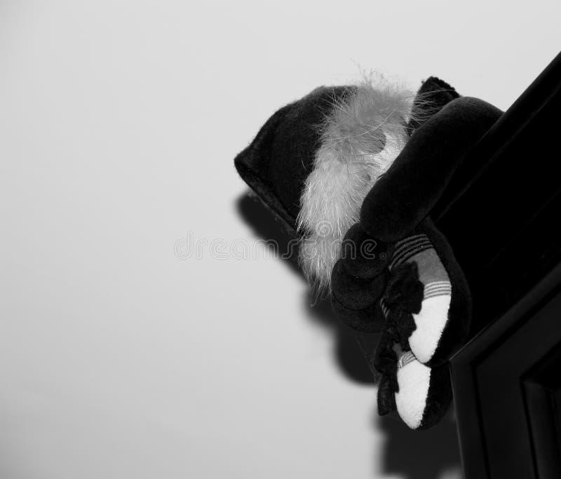 小丑和其唯一的阴影 免版税图库摄影