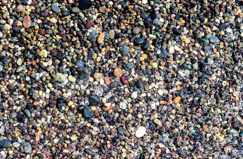 小五颜六色的湿石头 免版税库存图片