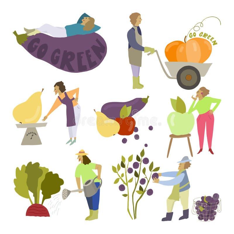 小人民和大菜果子 滑稽从事园艺 是绿色口号 皇族释放例证