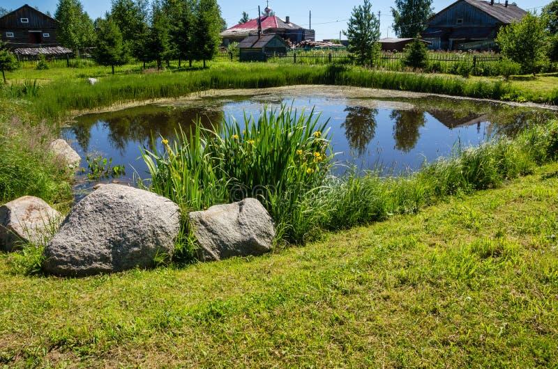 小人造池塘在一个夏日 免版税库存图片