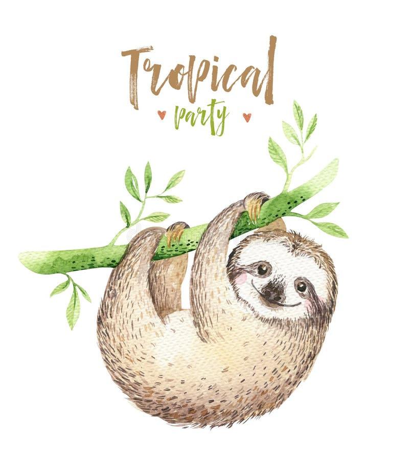 小动物怠惰托儿所被隔绝的绘画 水彩boho热带图画,儿童热带例证 逗人喜爱的棕榈 向量例证