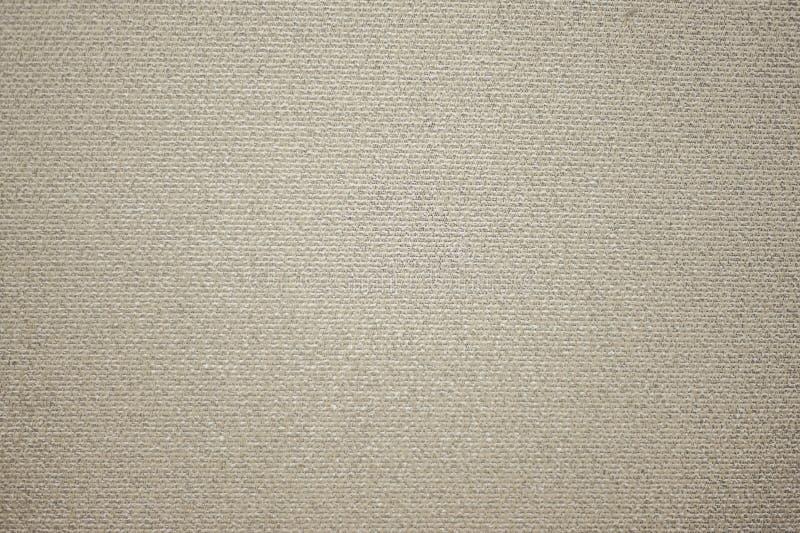 小卧室墙壁纹理 库存照片
