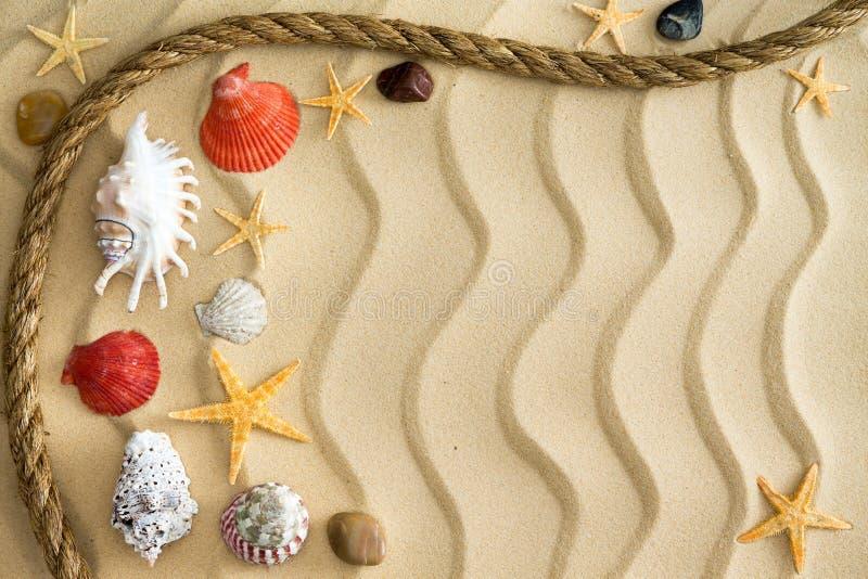小卵石和贝壳在起波纹的沙子与绳索 免版税库存图片