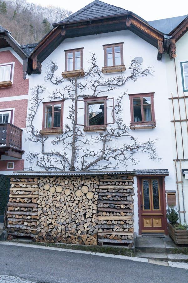 小历史城市Hallstatt在冬天奥地利 库存图片