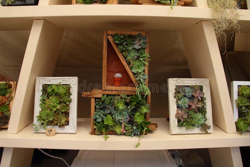 小垂直的庭院, 免版税库存图片