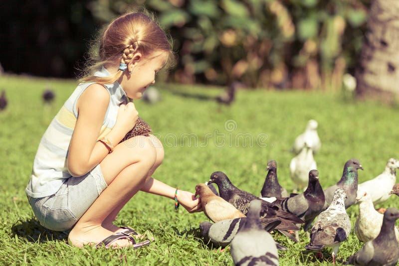 小女孩哺养的鸽子在公园 库存照片