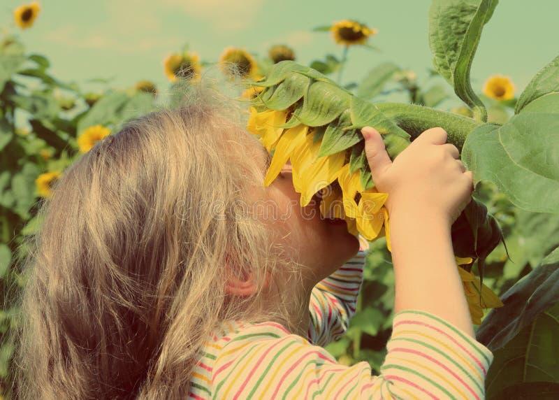 小女孩嗅到的向日葵-葡萄酒减速火箭的样式 库存照片