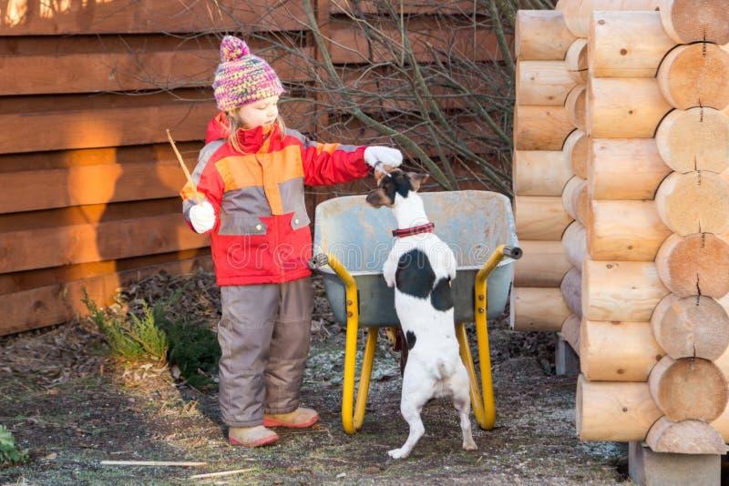 小女孩在庭院里款待狗一种款待 库存图片