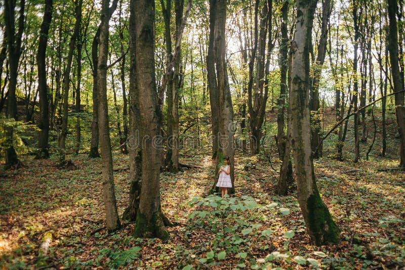小女孩在有蕨的森林里 免版税库存图片