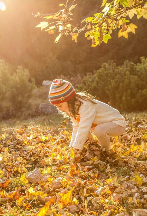 小女孩在秋天公园 免版税库存图片