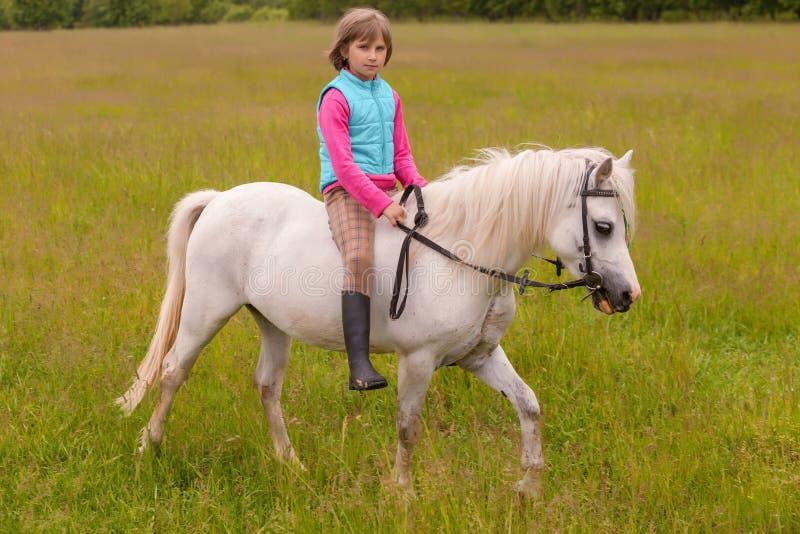 小女孩孩子在领域的一个白马走户外 库存照片