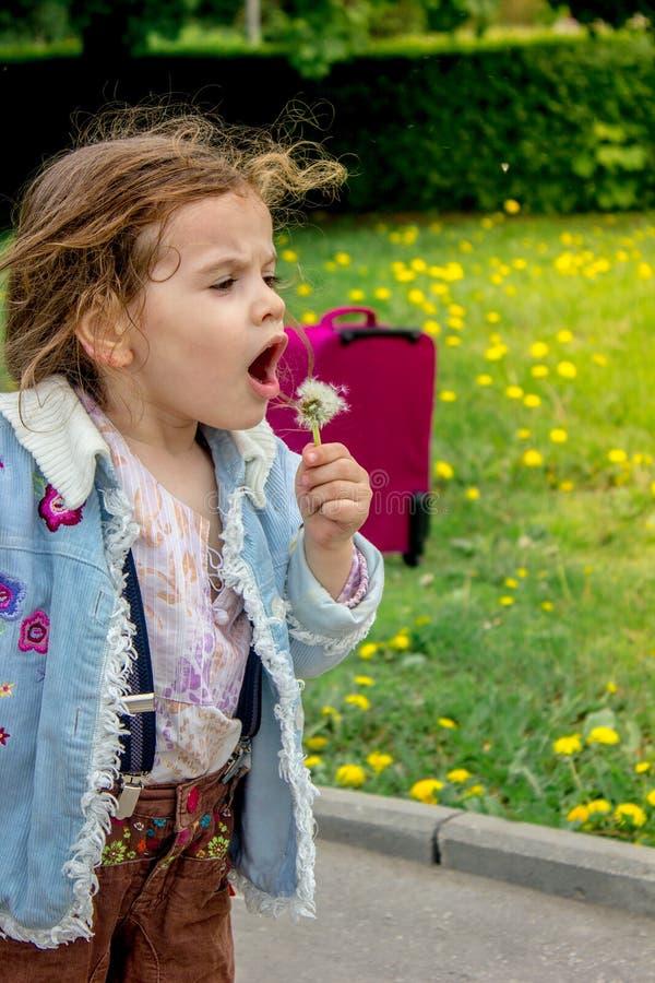 小女孩孩子打击蒲公英 免版税库存图片