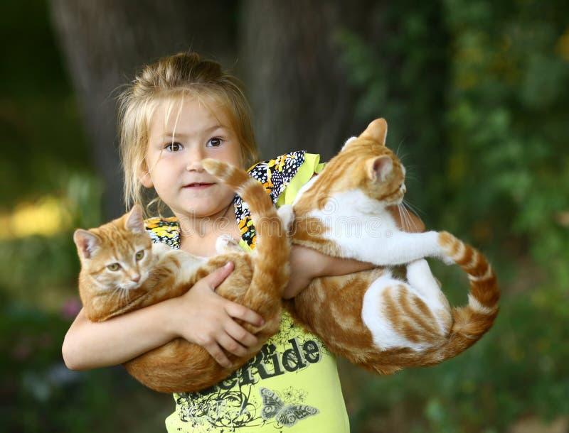 小女孩拥抱照片的猫关闭在绿色庭院背景 库存图片