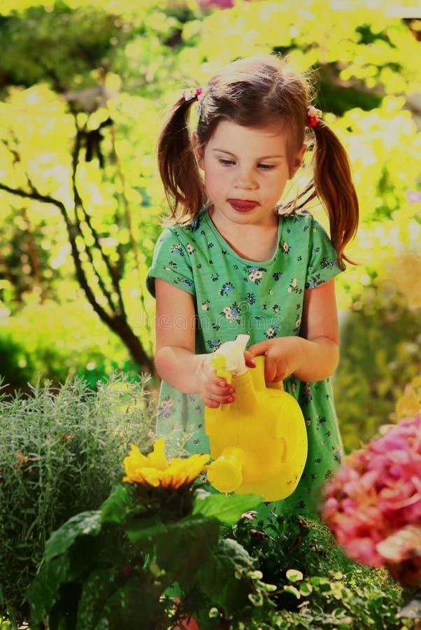 小女孩用水在庭院里能浇灌的花 免版税库存照片