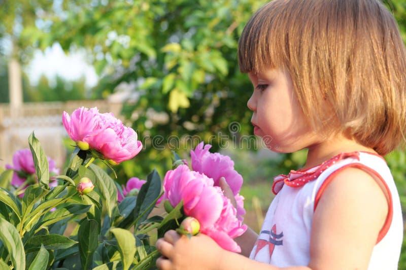 小女孩画象气味开花的牡丹在夏天 免版税库存图片