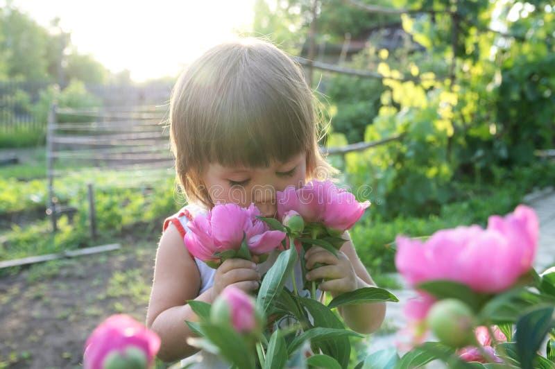 小女孩画象气味牡丹花 图库摄影