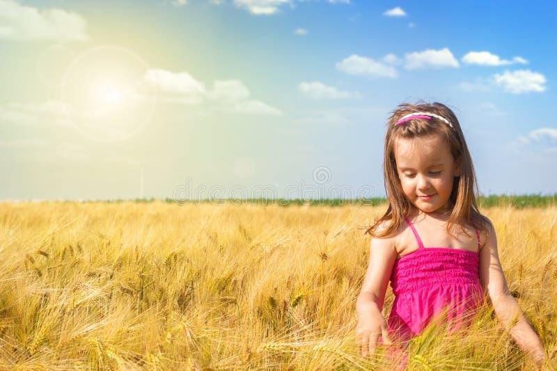 小女孩获得乐趣在麦田 图库摄影