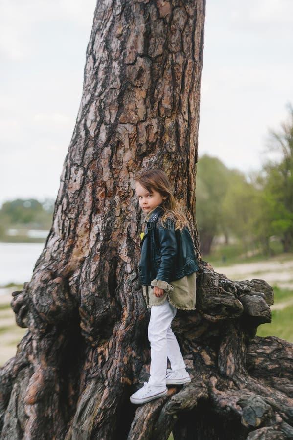 小女孩靠在一棵大橡树上,看着镜头 免版税库存图片