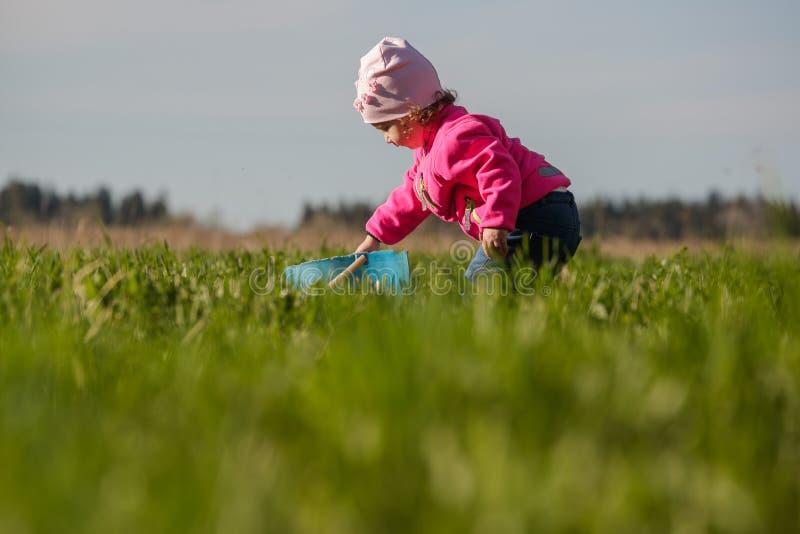 小孩在绿色领域工作 库存照片