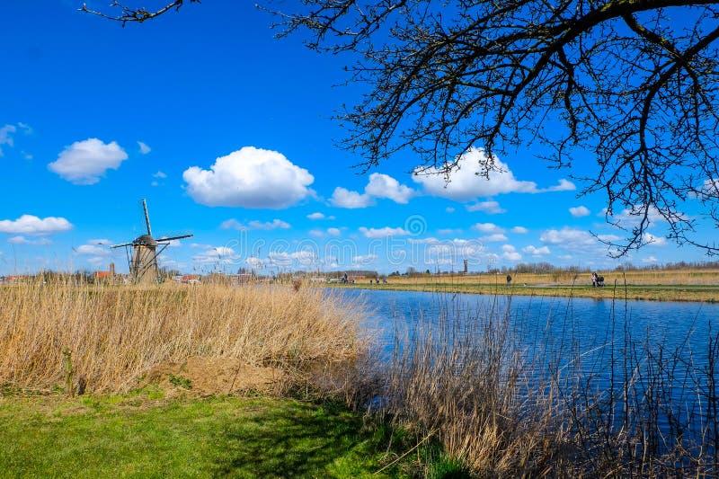 小孩堤防-荷兰的磨房 库存图片