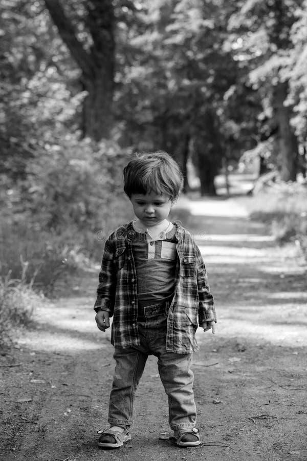 小孩男孩在一条小径站立在森林里 库存图片