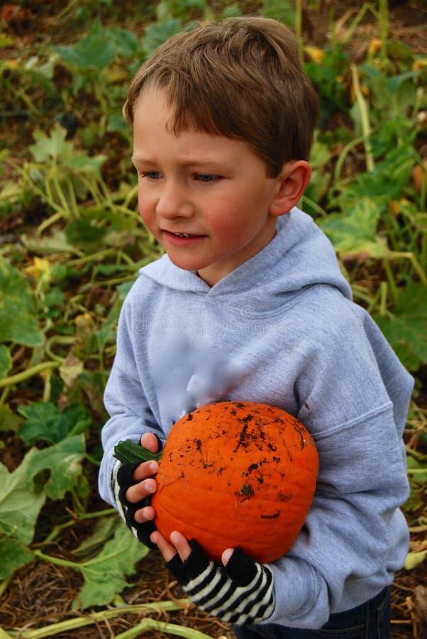 小孩男孩用橙色南瓜 免版税库存图片