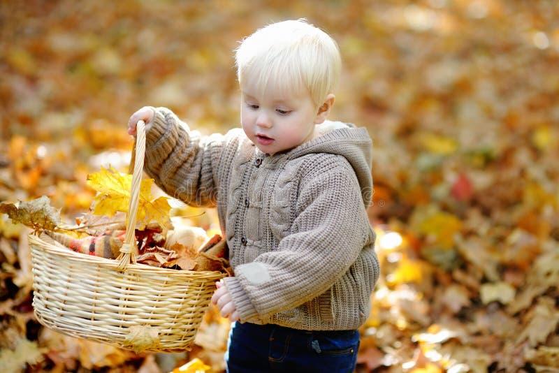 小孩获得乐趣在秋天 免版税库存图片