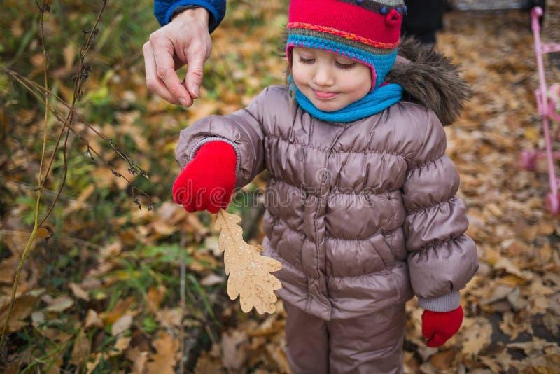 小孩,女婴在秋天的演奏叶子在自然步行户外 免版税库存图片