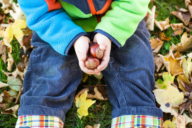 小小孩男孩获得乐趣在秋天公园 库存图片