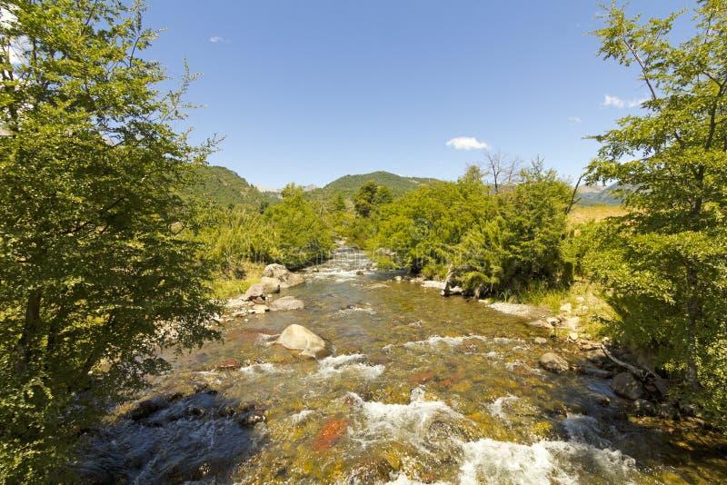 小小河在Nalcas国家公园,智利 免版税图库摄影