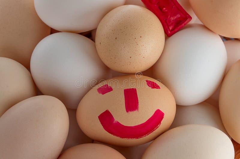 小小组鸡蛋 库存图片
