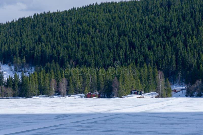 小屋在一个冻湖附近的多雪的森林里 免版税图库摄影