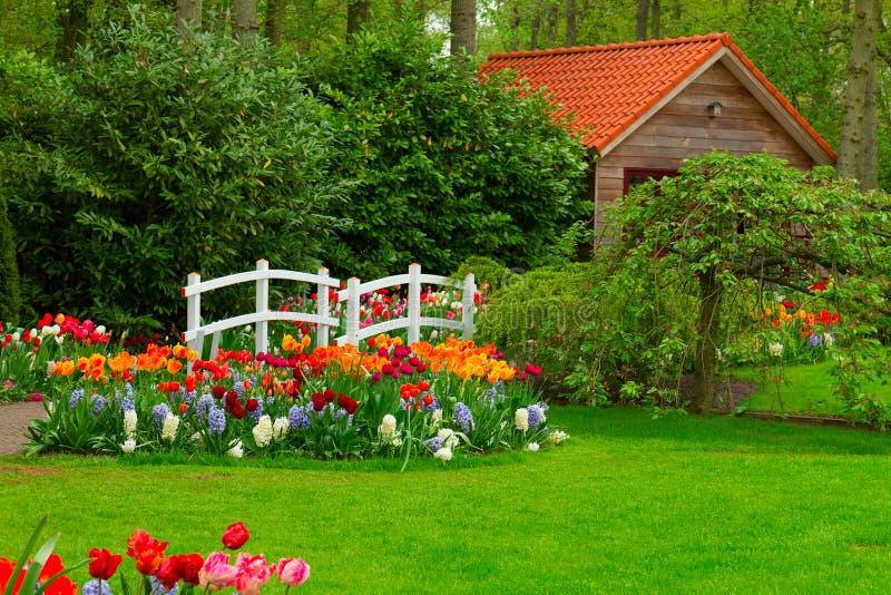 图片 包括有 室外, 公园, 小屋, 背包, 颜色, 庭院, 房子, 植物群图片