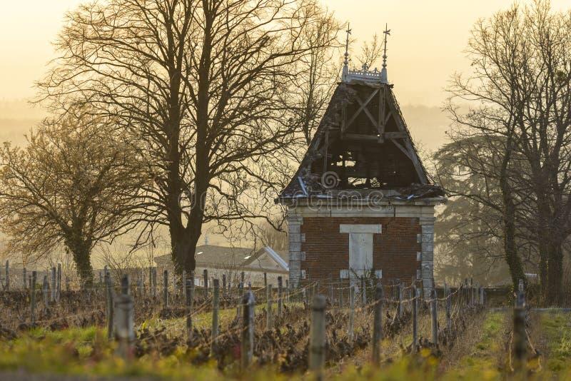 小屋在葡萄园里,博若莱红葡萄酒,法国 库存图片