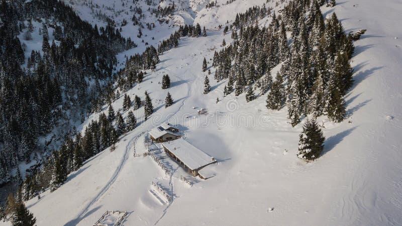 小屋Cassinelli的寄生虫鸟瞰图在雪秋天以后 意大利阿尔卑斯 免版税库存图片